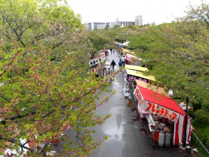 Colour photograph showing the 2010 Cherry Blossom Viewing & Festival Market at the Osaka Mint Bureau (Zoheikyoku) in Japan. Photograph by CJ Walsh. 2010-04-20. Click to enlarge.