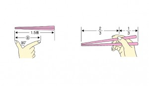 Proper Size of, and Grip to be used with, Japanese Chopsticks (Hashi)