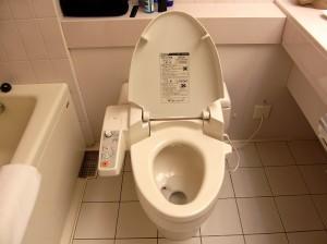Japan - Toilet Unit (2)