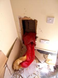 Belmayne, Dublin 13 - Fire Hazard (6)