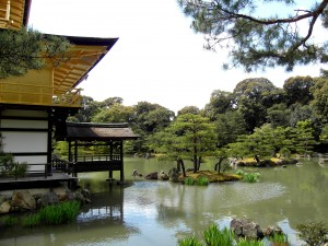 Kinkaku-ji Temple (The Golden Pavilion) In Context - Kyoto, Japan.